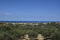 View Mediterranean sea and olive trees in crete island Stock Images