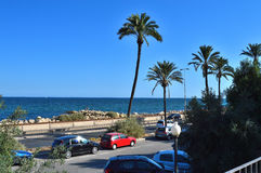 Mediterranean Sea Palm Trees And Beach Stock Photography