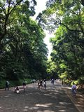 View of Meiji Shrine, located in Shibuya, Tokyo, is the Shinto shrine that is dedicated to the deified spirits of Emperor Meiji. Tokyo, Japan, 2rd, June, 2017 stock photos