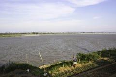View Mekhong River Wat Phra That Tha Uthen Nakhon Phanom Royalty Free Stock Images