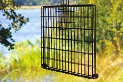 MEAT GRID HANGING FROM A TREE WITH RIVER IN THE BACKGROUND AT A CAMPSITE. View of a metal grid used for cooking meat on a fire in a camping area royalty free stock images