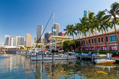 View of Miami Marina and Bayside Marketplace. MIAMI - August 8 : View of Miami Marina and Bayside Marketplace in August 8, 2014.  The marina was completely Royalty Free Stock Photos