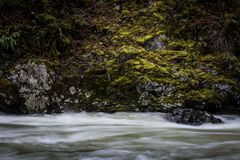 Middle Fork Snoqualmie River Royalty Free Stock Photo
