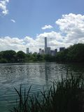 View of Midtown Manhattan from Central Park. Royalty Free Stock Image