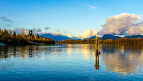 View of the mighty Fraser River in BC Canada Stock Photo