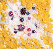 View of milk pouring into cereal Royalty Free Stock Images