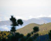View from the Mirador de Chipeque Royalty Free Stock Photos