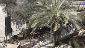 View of modern Jerusalem from the Old City of Jerusalem's wall. Israel stock footage