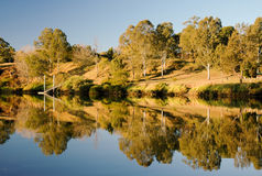 View from the Moggill Ferry Royalty Free Stock Photos