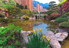 View of Monaco garden, Cote d'Azur Stock Images