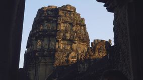View of monkey on ruins of Angkor Wat temple in early morning stock video