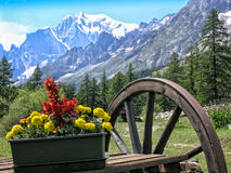 View of Mont Blanc mountain in summer Royalty Free Stock Photography