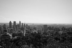 View from Mont Royal Royalty Free Stock Photo