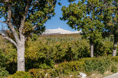 View from the Mont Ventoux Stock Photography
