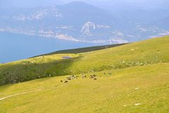 View from Monte Baldo Royalty Free Stock Images