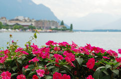 View of Montreux. Stock Image