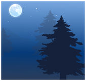 The view of Moon. Over treetops Royalty Free Stock Images