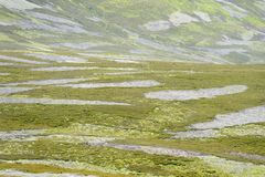 View on Moorland. View of moorland with burned patches, Cairngorms national park, Scotland, UK royalty free stock photography