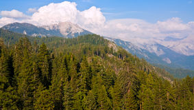 View from Moro Rock stock image