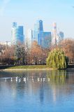 View of Moscow City Business Center. The Moscow river embankment. Autumn trees. White birds sit on a partly frozen lake. Water reflection Stock Images