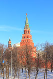View of the Moscow Kremlin Stock Photography
