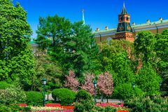 The Kremlin in Moscow in the spring against the background of fl Royalty Free Stock Photography