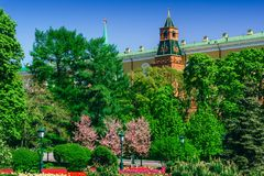 The Kremlin in Moscow in the spring against the background of fl Royalty Free Stock Photos