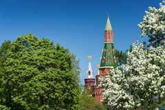 The Kremlin in Moscow in the spring against the background of fl Stock Photography