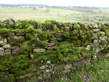 A view of a moss covered dry stone wall. A dry stone wall covered in moss with a country landscape background Stock Photography