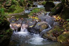 View of moss covered rocks and small creek in Golungo Alto, Angola stock photos