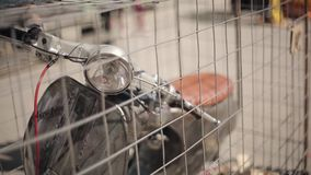 View of motorcycle with orange seat in cage. Posters on cage. Summer day. Bikers meeting. Exhibit. View of motorcycle with orange seat in cage. Posters on cage stock video footage
