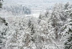 View from mound in winter time Stock Photography