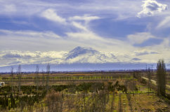 View of the mount Ararat all covered snow Royalty Free Stock Image