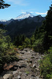 View of Mount Baker. Landscape view of Mount Baker in Washington Royalty Free Stock Photos