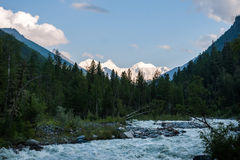 View of Mount Belukha, taiga and river Akkem. Trekking in the Altai Mountains Royalty Free Stock Photography