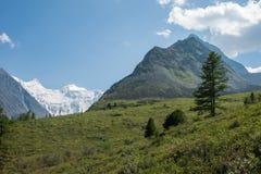 View of Mount Belukha. Trekking in the Altai Mountains Stock Photos