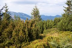 View from Mount Chopok in Sunny Day, ski resort Jasna, Low Tatras National Park in Slovak Republic royalty free stock image