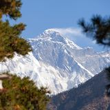 View of Mount Everest in the middle pine trees Royalty Free Stock Images