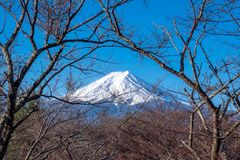 View of Mount Fuji, commonly called Fuji san in Japanese, Mount Fuji`s exceptionally symmetrical cone, which is snow capped for. About five months a year. It is stock image