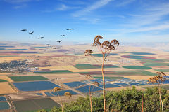 View from Mount Gilboa Stock Images
