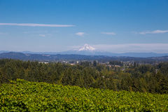 View of Mount Hood Oregon Royalty Free Stock Images