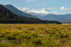 View of Mount Hooker in Southern Alps Stock Photo
