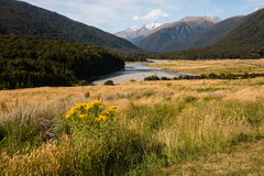 View of Mount Hooker in Southern Alps Royalty Free Stock Photos