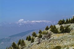 View of Mount Lebanon from the Shouf Biosphere Reserve in the Chouf Mountains royalty free stock photos