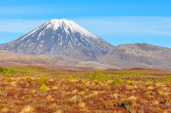 View of Mount Ngauruhoe in the Tongariro National Park, New Zeal Stock Photography