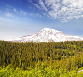 A  view of mount Rainier Royalty Free Stock Images