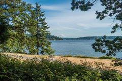 View Of Mount Rainier From Seward Park 4 Royalty Free Stock Images