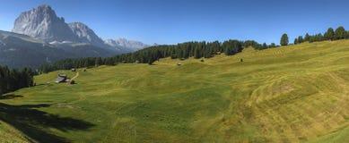 View of Mount Sassolungo. Daunei location: meadow, pine forest and Sassolungo - Dolomite, Italy stock photos