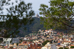 View of Mount Tibidabo through the branches of pine trees. Stock Images