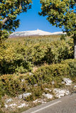 View from the Mount Ventoux, Royalty Free Stock Images